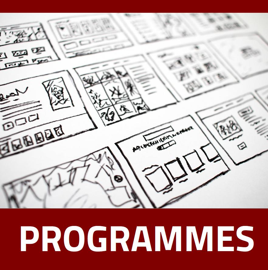 Immersive Learning Programmes